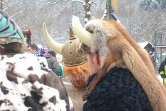 Karneval 2010 032