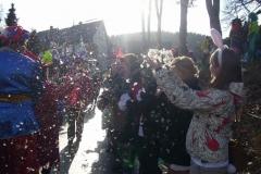 Karneval 2012 72