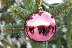 2010-Weihnachtstag-30