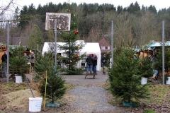 2012-Weihnacht-02
