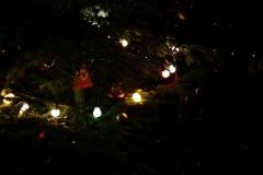 2013-Weihnachtstag-57