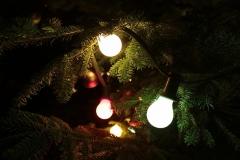 2013-Weihnachtstag-58